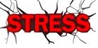 StressMaster Stress klein